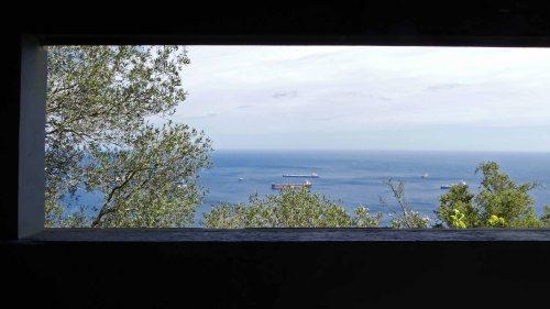 170322-GIBMS115-1415-View through window