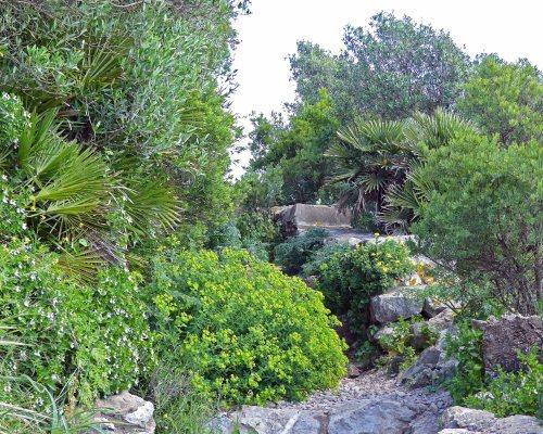 170322-GIBMS31-1203-Med Steps cliff path