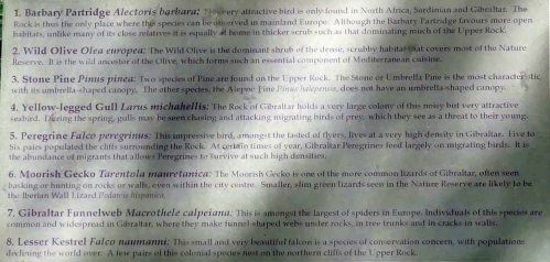 170322-GIBMS70-1243-Upper Rock wildlife info board-birds