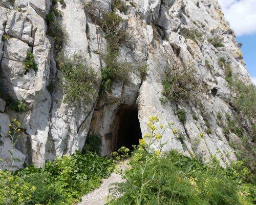 170322-GIBMS97-1356-Tunnel entrance
